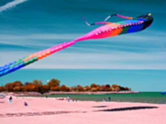 Kite event