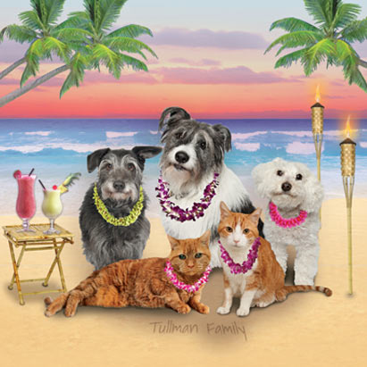 Pet Beach Party