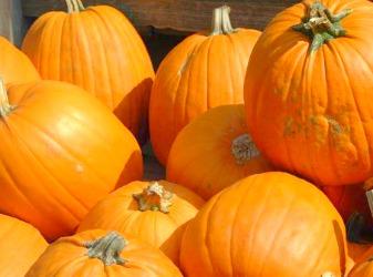Wheaton's Halloween Market